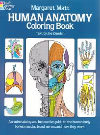 Matt, M - Human Anatomy Colouring Book